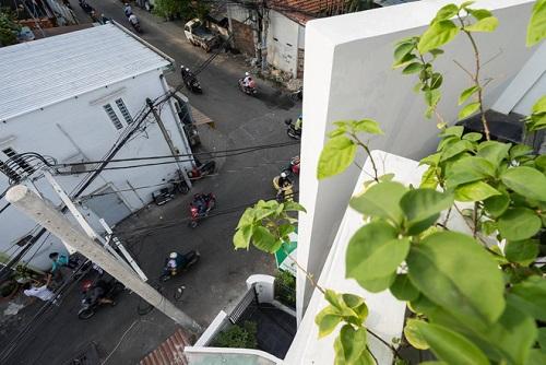 Không gian trồng cây xanh trên sân thượng
