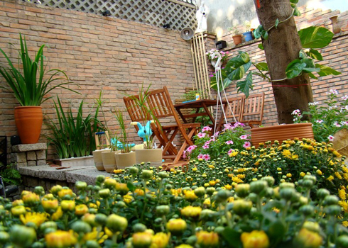 Những góc nhỏ bình yên chứa trong căn nhà phố mộc mạc